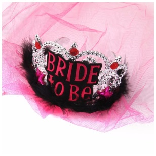 Bride To Be Tiara Pink Veil