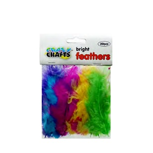 Feathers - Bright Assorted 20pc