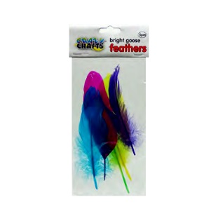 Goose Feathers - Bright Asst 5pc