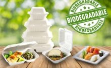 Biodegradable Sugar Cane Products
